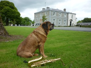 Photo Credit: Tankardstown House