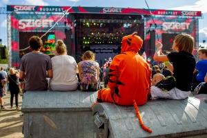 Photo Credit: Sziget Festival