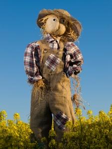 Photo Credit: Durrow Scarecrow Festival